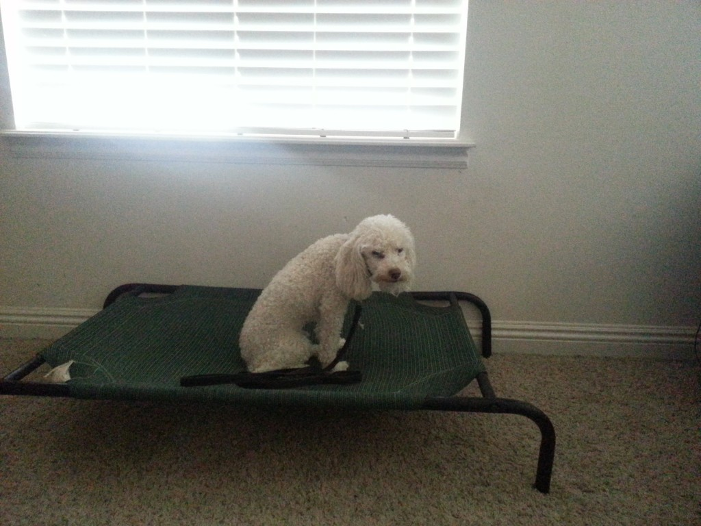 """Toby Practices """"Place"""""""