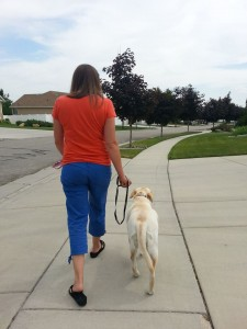 Sundance and her owner doign their very first off leash walk, all thanks to the E-Touch training method!